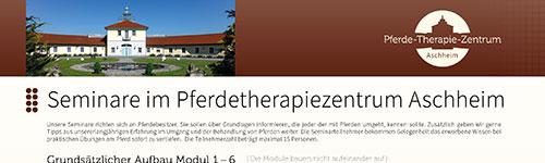 Pferdetherapiezentrum Flyervorschau