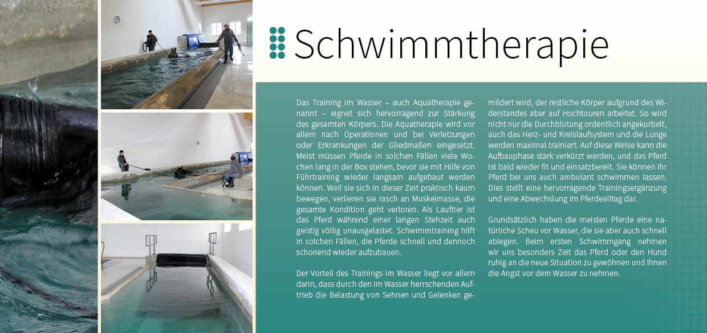 Prospekt Pferdetherapiezentrum Aschheim